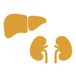 3 Step Liver and Kidney Protocol